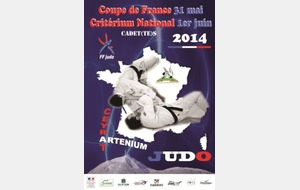 Coupe de France Cadets-Cadettes 2014